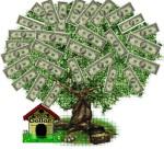 En del tror att pengar växer på trän