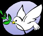 Skapa fred istället