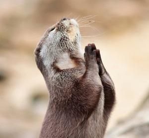 Be en bön